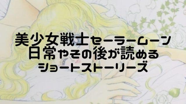 美少女戦士セーラームーンショートストーリーズ続編